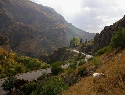 Армения котайкская область