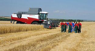 Рекордный урожай зерна на Кубани. Фото: пресс-служба Президента России. http://kremlin.ru/