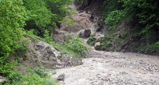 Селевой поток в горах. Фото: http://www.07.mchs.gov.ru/pressroom/news/item/2800935/