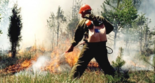 Ликвидация лесного пожара. Фото: http://09.mchs.gov.ru/operationalpage/operational/item/3131757/