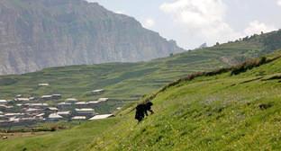 Село Кванада Цумадинского района Дагестана. Фото: Шамиль Кураев http://www.odnoselchane.ru/