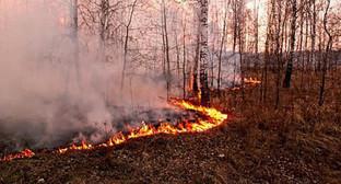 Лесной пожар. Фото: http://www.riadagestan.ru/news/tabasaranskiy_rayon/pozhary_v_lesakh_tabasaranskogo_rayona_likvidirovany/