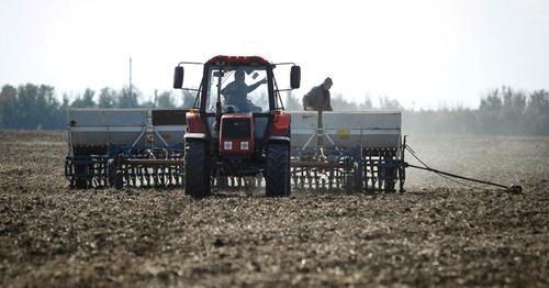 Сельскохозяйственные работы. Фото https://www.yuga.ru/news/391876