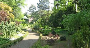 Ботанический сад в Тбилиси. Фото: © сайт Национального ботанического сада в Тбилиси, https://www.facebook.com/NBGGEO/timeline