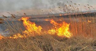 Пожар. Фото: Михаил Ступин / Югополис