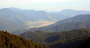Вид на Панкисское ущелье. Фото: Travelgeorgia.ru